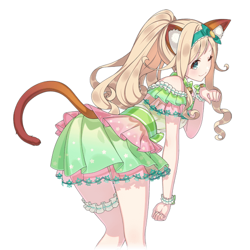 【香猫】カモミール